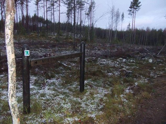 Hakkuu retkeilyreitin vieressä Teijon retkeilyalueella. Kuvattu joulukuussa 2011. Kuva: Hannu Paunila.