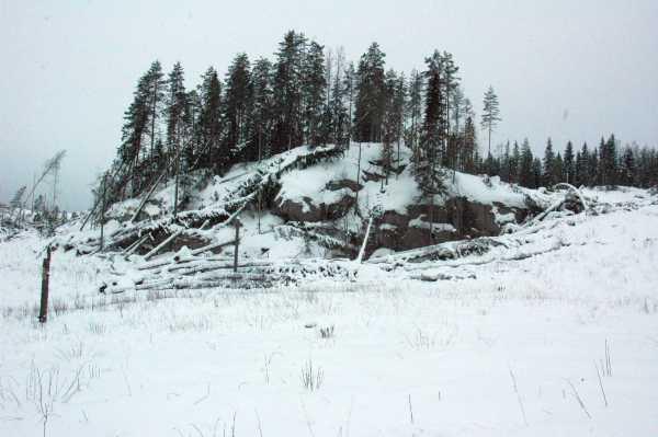 Suojeluesityksen ulkopuolella, mm. Ahven-Valkian ja Kumpulammen länsipuolella on jo hakattu paljon.
