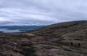 Laplandskij lesin tunturimaisemaa.