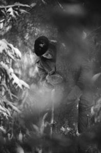 Suonna Kononen puussa Heinosenahon hakkuita estämässä 21.2.1989.