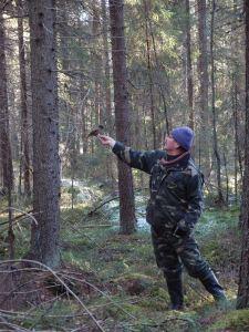 Kuukkeli laskeutuu Hannu Siitosen kädelle.