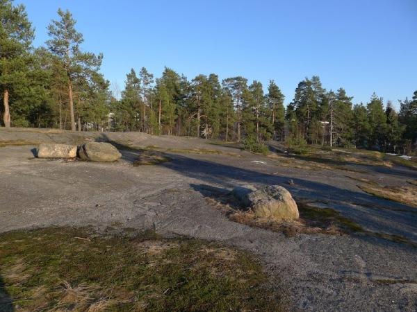 14-Kalteentien-metsä_Jakomäki_OMa.JPG