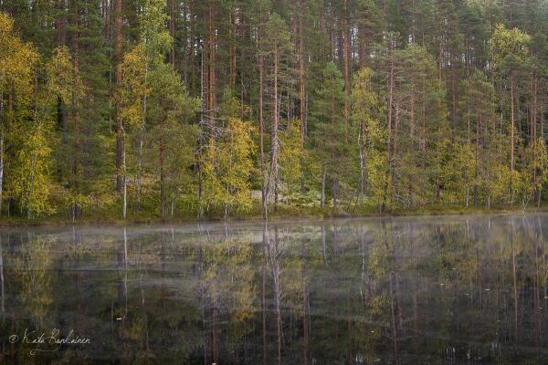 Hällämönharju&Pikku-Hällämö.jpg