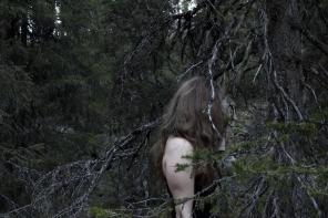 Lauran metsäsuhdeblogin kuva